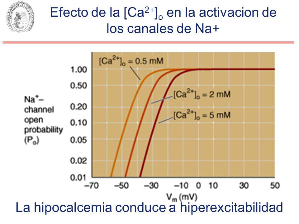 Efecto de la [Ca2+]o en la activacion de los canales de Na+